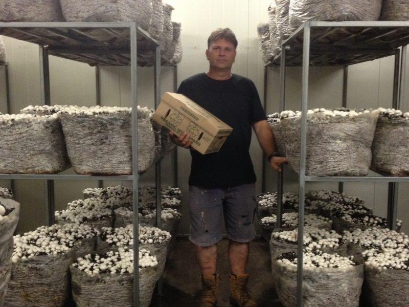 Benalla Mushrooms: Our supplier of certified organic mushrooms