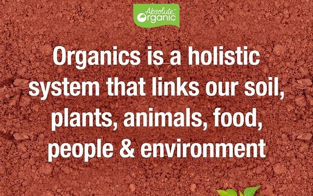 Do you really know what Organic means?