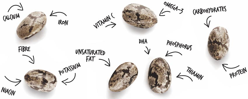 How many nutrients can a tiny superfood offer?